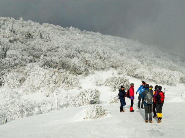 69b50744a2 奈良・樹氷の三峰山登山で雪遊び♪特製登山弁当と温かいお飲み物付き ...